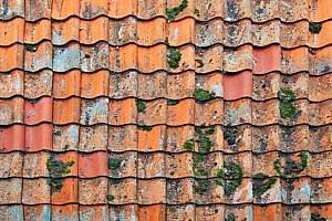 invloed weer op dak